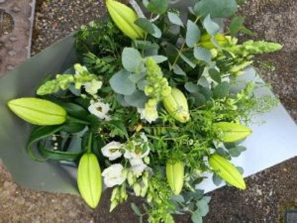 Luscious Lilys